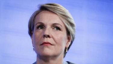 Labor deputy leader Tanya Plibersek.