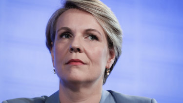 A little Keating-esque: Tanya Plibersek.