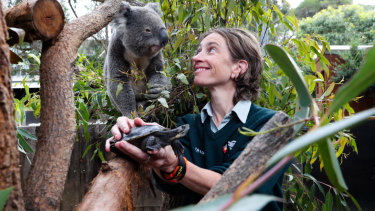 """""""I've always had a passion for animals"""": Kerry Staker at Taronga Zoo."""