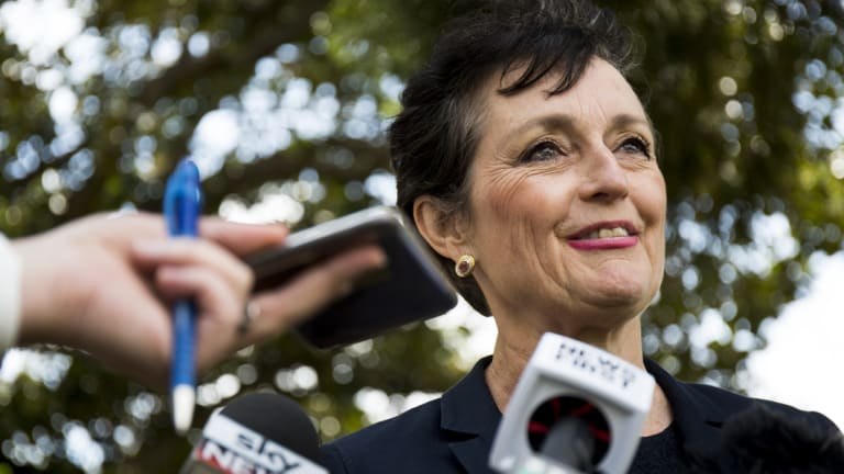 Minister for the Prevention of Domestic Violence and Sexual Assault Pru Goward has announced NSW public sector employees will be entitled to 10 days paid domestic violence leave from next year.