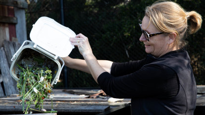 Household food waste program fails to catch on among Sydney councils