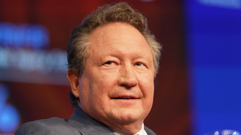 Andrew Forrest says fuel loads, not climate change, are primary cause of bushfires