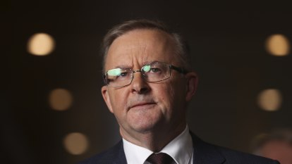 Albanese shakes the tin at Labor's night of nights