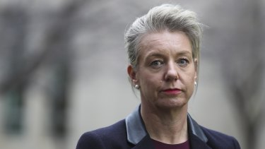 Bridget McKenzie says too many MPs want to be fashionable about climate change.