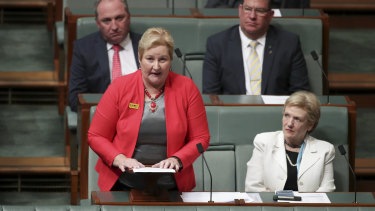 Liberal MP Ann Sudmalis attacks colleagues during a  speech to Parliament on Monday night.