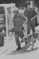 Police bomb squad and sniffer dogs arrive at the stadium during the bomb square.