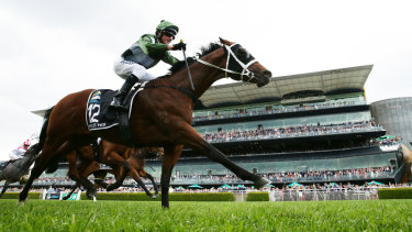 Glen Boss pilots Yes Yes Yes to victory in front of the Randwick grandstand.
