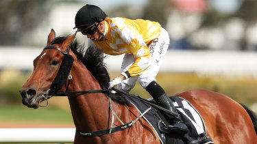 Jockey Andrew Adkins was involved in a third horror fall in 15 months at Rosehill on Saturday.