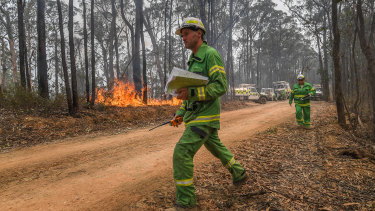 DELWP officers burn a containment line along Blaze Road in State Forest north of Bairnsdale.