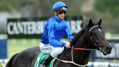 Race-by-race tips and preview for Canterbury on Wednesday