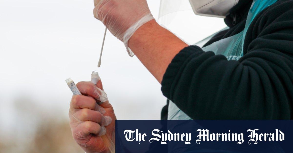 Australian firm receives FDA approval for 'breakthrough' COVID test – Sydney Morning Herald