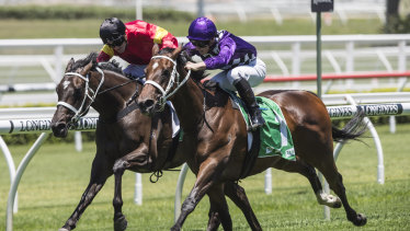 Tabcorp's bookmaking business was hit by competition from online bookmakers.