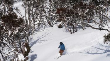 COVID-19 has created a 'very different' ski season at Australia's snow resorts.