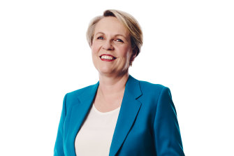 "Tanya Plibersek: ""In the six years I was a deputy leader, there wouldn't have been a week that I wasn't away several nights a week. You need a very supportive family structure for that."""