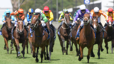 Fantastic Farm: Action is back at Warwick farm today.