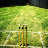 Consigned to backyard cricket.