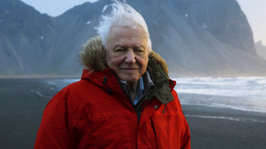 David Attenborough on Stokksnes Beach, Iceland, during filming of his latest series, Seven Worlds, One Planet.