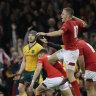 Wales sensing something special against the Springboks