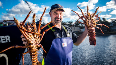 """Brendan """"Squizzy"""" Taylor has been catching lobster for 27 years and says the job has its ups and downs."""