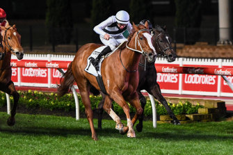 Pippie, ridden by jockey Damian Lane, won the Moir Stakes at Moonee Valley.