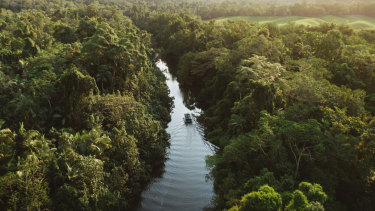 A government body warns that climate change threatens to force animals in the Wet Tropics to extinction.
