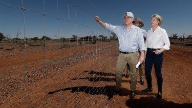 Prime Minister Scott Morrison has announced subsidies for 1600 apprenticeships in regional Australia.