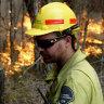 Berejiklian government abandons forestry privatisation after bushfires