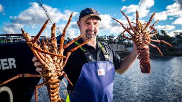 Tonnes of lobster will be flown overseas.