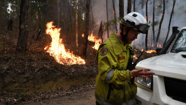 National Parks and Wildlife Service staff burning containment lines ahead of the fire front at Burrill Lake on Sunday.