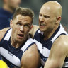 Cats' balancing act in milestone match
