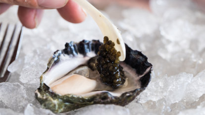 A Sydney fine-diner is now selling natural oysters for $8 each