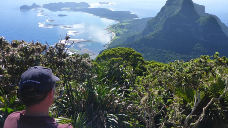 The former Planning employee feared contamination of Lord Howe Island before his employment was terminated.