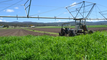 The Mulgowie Farming Company, which grows 30 per cent of  south-east Queensland's vegetables.