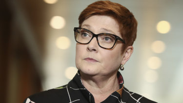 Foreign Affairs Minister Marise Payne would have the power to cancel contracts under the laws if they contradict Australia's national interest.
