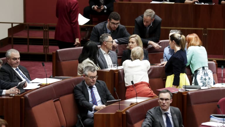 Greens leader Richard Di Natale discussed tactics in the Senate.