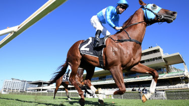 Embracer in action in the Events By ATC Plate in May at Warwick Farm, where he returns on Wednesday.