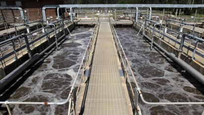 Why Queensland is seeing a sudden spate of positive wastewater tests