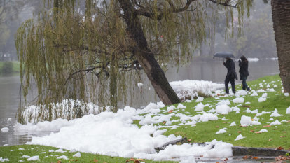 Merri Creek covered in mysterious foam bubbles after a night of heavy rain