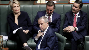 The dismay on the Labor side over Bill Shorten's decision on company tax cuts is obvious.