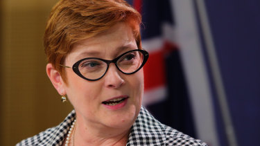 "Foreign Minister Marise Payne says Australia will work with with like-minded nations to safeguard against state actors who ""misuse cyberspace as a means of repression, control and instability""."