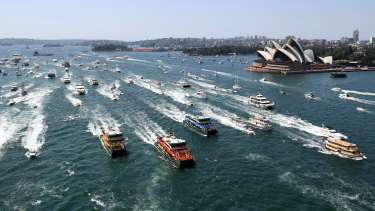 Ferries race on Sydney Harbour last year.