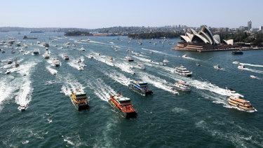 Ferries race on Sydney Harbour last year.