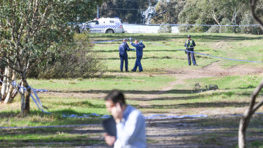 Uniform police and detectives at the scene in Royal Park where a woman's body was found on Saturday morning.
