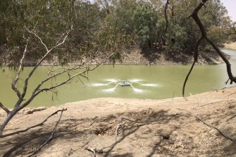 An aerators introduces oxygen into waters of Lake Wetherell, part of the Darling River system near Menindee, in 2019.