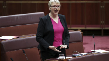 Senator Janet Rice, chair of the Senate environment and communications reference committee.