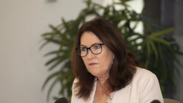 Senator Deborah O'Neill at the inquiry had plenty of questions for NAB and EY.