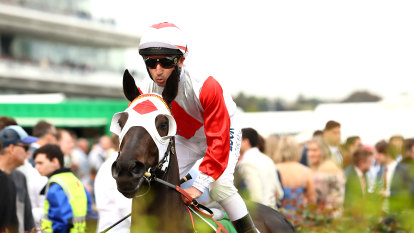 Cox Plate or Empire Rose? Mystic Journey's grand final a mystery