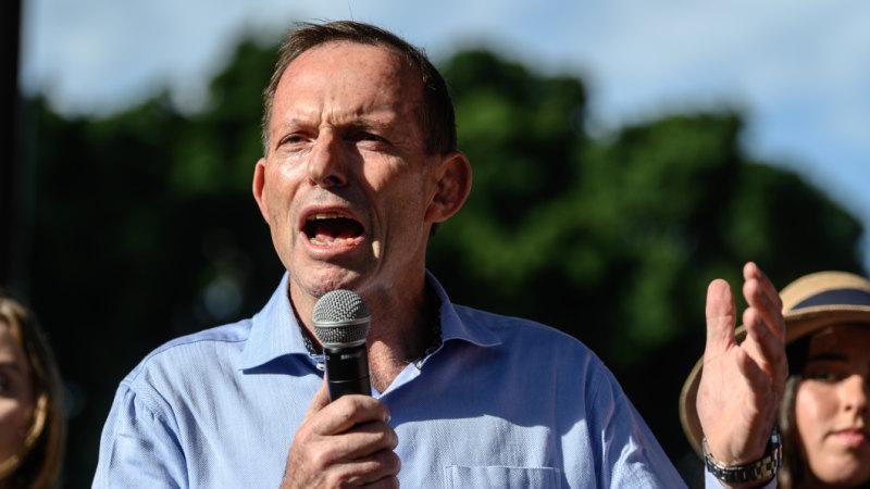 Tony Abbott: NSW abortion bill is 'infanticide on demand'