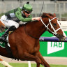 Classy field for Ballarat Cup as curtain comes down on carnival