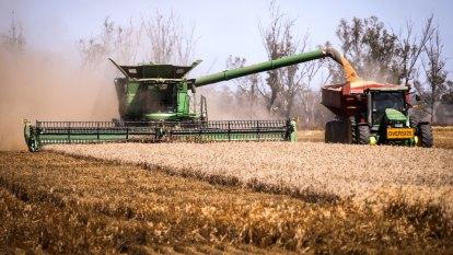 'Skip in their step': Bin-busting grain harvest reviving rural towns